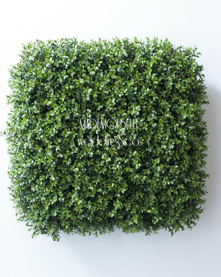 3E3F3142 - cvetni zid