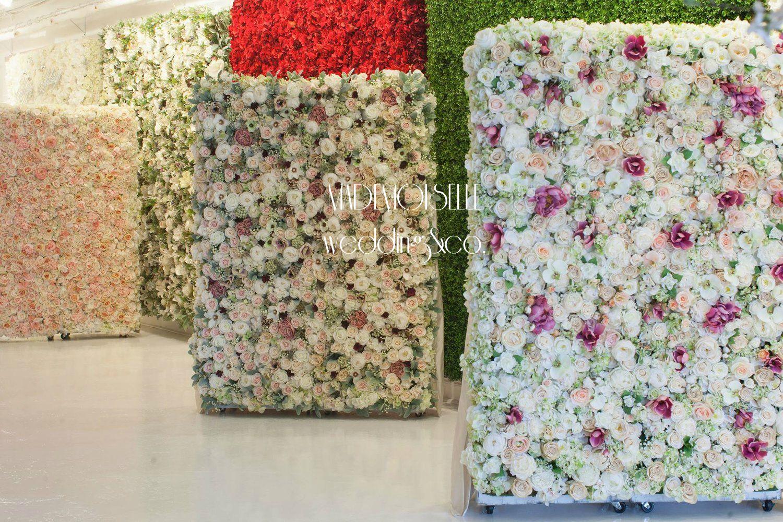 cvetzi zidovi - 019