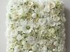 3E3F3129 - cvetni zid