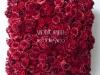 3E3F3138 - cvetni zid