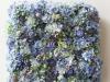 3E3F3154 - cvetni zid