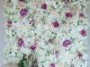 cvetni zid - 008