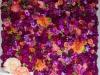 cvetni zid - 011