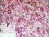 cvetni zid - 013
