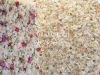 cvetni zidovi - 017