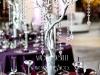 Dekoracija vencanja-beograd-grancice-svece-visece svece-dekoracija grancicama i kristalima-drva za dekoraciju-zimska dekoracija vencanja-srebrna dekoracija-kristali