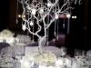 trendovi-za-dekoraciju-vencanja-zima-2012-18